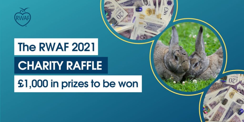 RWAF 2021 Charity Raffle - £1000 in prizes to be won