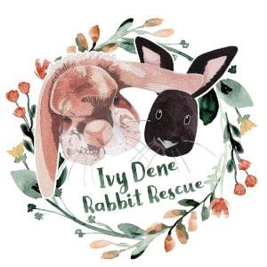 Ivy Dene Rabbit Rescue Leeds