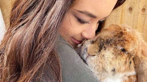 Ive Dene Rabbit Charity
