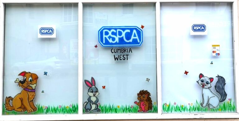 RSPCA West Cunbria Window Front